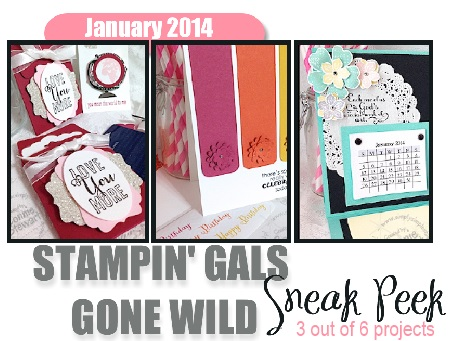 SGGW sneak peek Jan2013-1