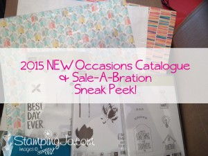 stampingjo's catalogue sneak peek2