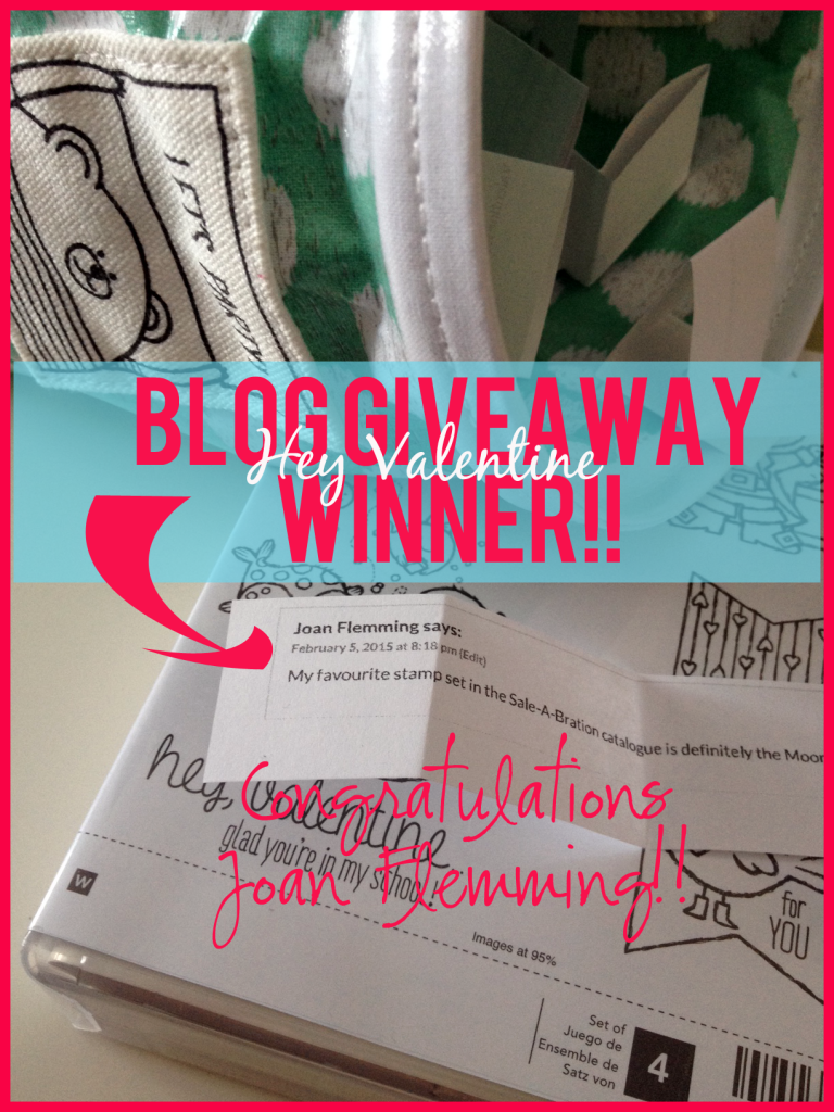 blog giveaway winner