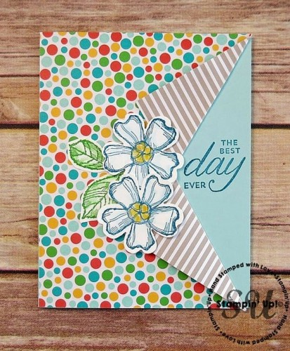 Birthday Blossoms, Birthday Card, Stampin Up,