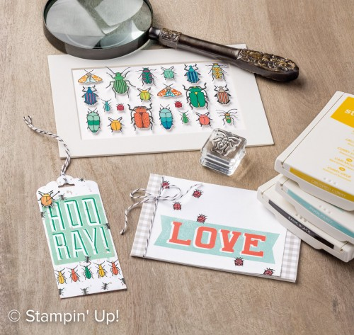 Beetles & Bugs stamp set, Stampin Up, 2017 Occasions catalogue
