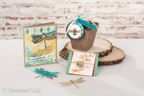 Dragonfly Dreams, Stampin Up, 2017 Occasions catalogue