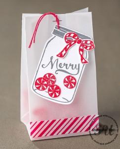 Gift Bag,Gift Packaging using cardmaking supplies