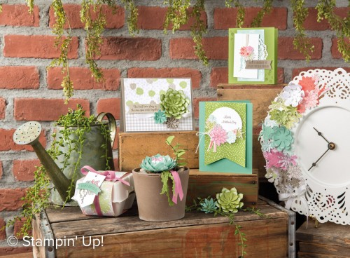 Succulent Garden Suite, Stampin Up, 2017 Occasions