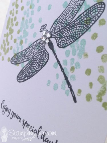 Quick and Easy No Layer Stamped Card: Dragonfly Dreams stamp set