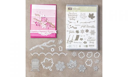 Colorful Seasons stamp set, bundle 145348