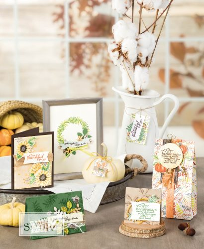 Gorgeous new Painted Autumn Suite from Stampin Up