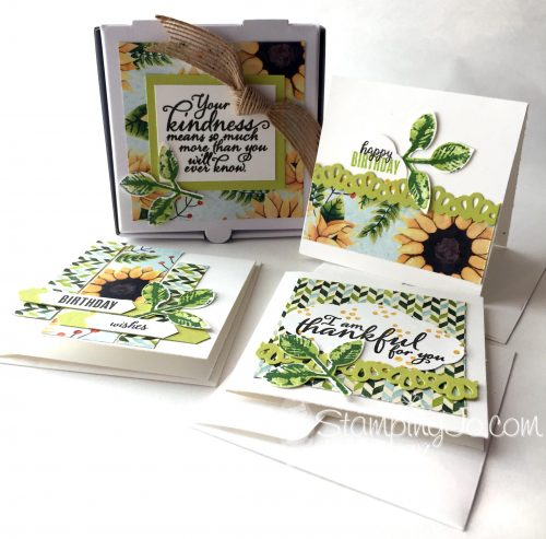 Painted Harvest, Mini Pizza Box, mini stamped cards